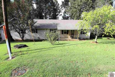 Graves County Single Family Home For Sale: 98 Boaz Cemetery Road