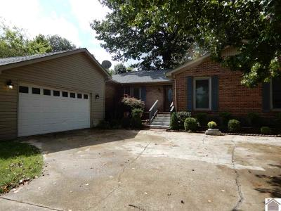 McCracken County Single Family Home For Sale: 1255 Allen Lane