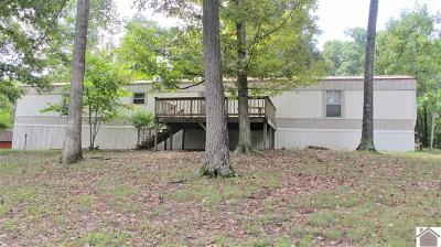 Eddyville Manufactured Home For Sale: 106 Tinsley Creek Rd