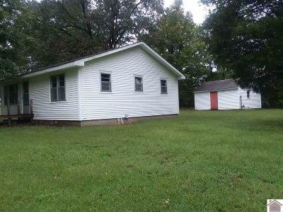 Graves County Single Family Home For Sale: 2117 State Route 301