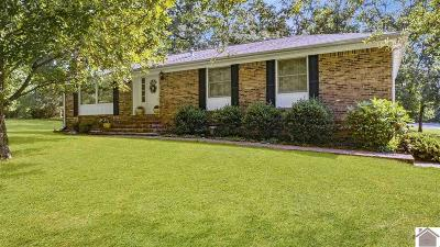 Calloway County Single Family Home For Sale: 24 Nottingham Lane