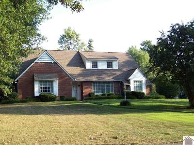 Graves County Single Family Home For Sale: 1303 High Contente Ct