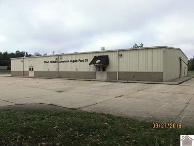 McCracken County Commercial For Sale: 425 Legion Dr