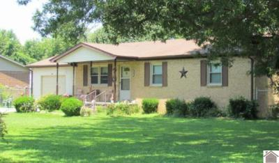 Livingston County Single Family Home Contract Recd - See Rmrks: 194 Erwin Circle