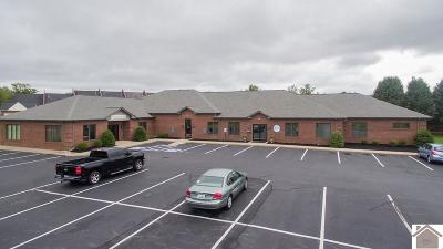 McCracken County Commercial For Sale: 5050 Village Square Dr