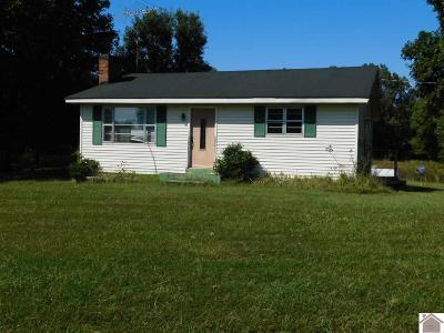 Calloway County Single Family Home For Sale: 421 Peeler Road