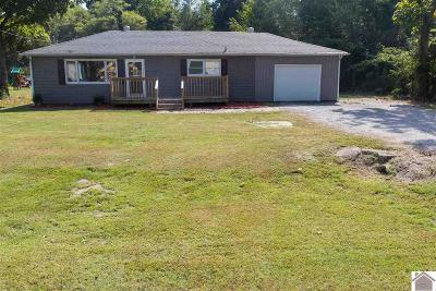 Livingston County Single Family Home For Sale: 1618 Us 60 West