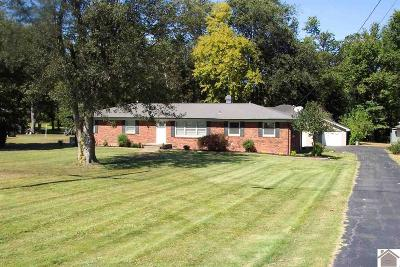 Paducah Single Family Home For Sale: 6830 Kentucky Dam Road