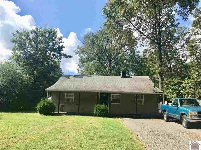 Paducah Single Family Home For Sale: 943 N 26th St