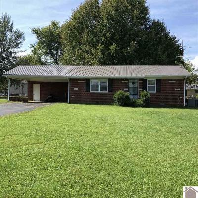 Graves County Single Family Home For Sale: 8869 S St Rt 45