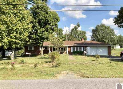 Marshall County Single Family Home For Sale: 203 Jackson School Rd.