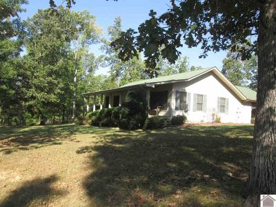 Lyon County, Trigg County Single Family Home For Sale: 10155 St. Rt. 93 S
