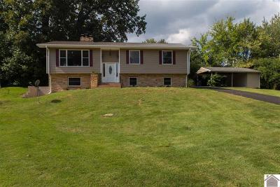 Paducah Single Family Home For Sale: 3711 Brighton Cove