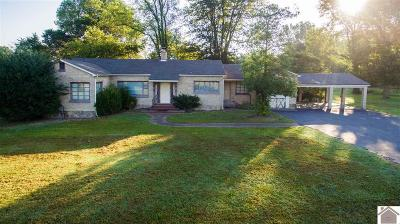 Graves County Single Family Home For Sale: 9374 State Highway 1241