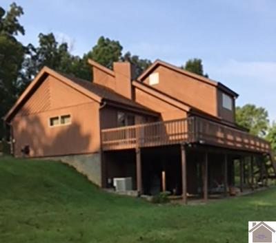 Cadiz, Grand Rivers, Trigg County, Eddyville, Kuttawa Single Family Home Contract Recd - See Rmrks: 98 Persimmon Place