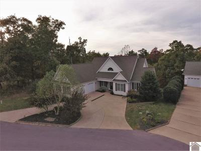Single Family Home For Sale: 710 Gull Harbor Lane