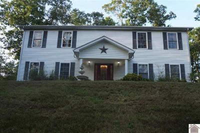 Calloway County, Marshall County Single Family Home For Sale: 424 Lax Drive