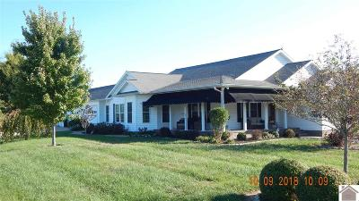 Calloway County, Marshall County Single Family Home For Sale: 603 Eagle Lake Drive