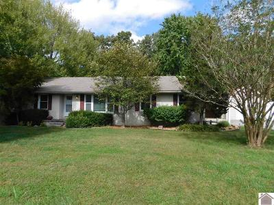 Calloway County, Marshall County Single Family Home For Sale: 325 West Dr