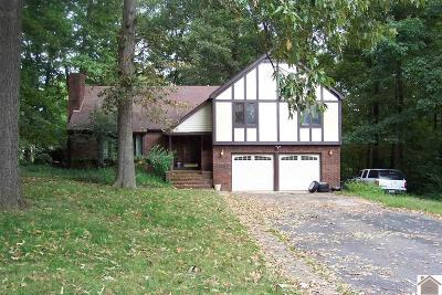 Paducah Single Family Home For Sale: 229 Tudor Blvd