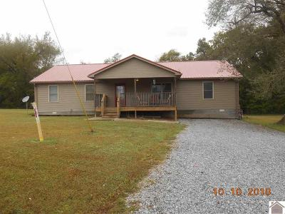 Trigg County Single Family Home For Sale: 1172 Blackhawk Rd.