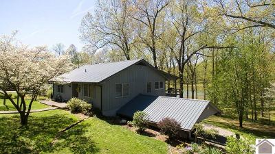 Cadiz, Trigg County, Eddyville, Kuttawa, Grand Rivers Single Family Home For Sale: 236 Yopp Road