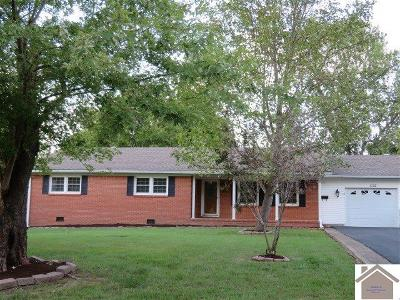 Calloway County, Marshall County Single Family Home For Sale: 1002 Irene Terrace
