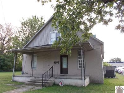 McCracken County Multi Family Home For Sale: 1240 Park Ave