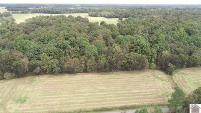 Calloway County Residential Lots & Land For Sale: Scott Fitts Rd.
