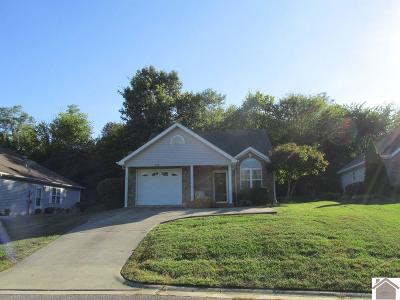 McCracken County Single Family Home For Sale: 909 Stonebrook Court
