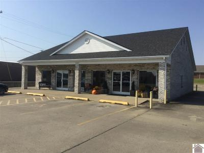 Graves County Commercial For Sale: 1245 Paris Rd