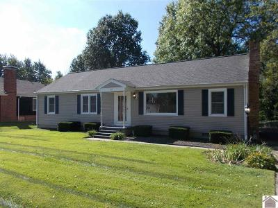 McCracken County Single Family Home For Sale: 311 S Friendship