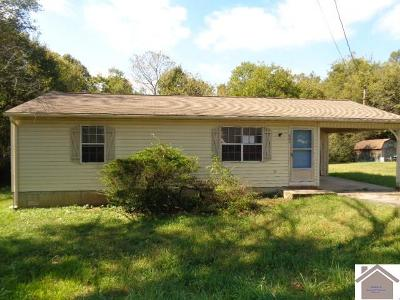 Calloway County, Marshall County Single Family Home For Sale: 622 Broad St