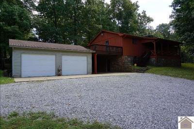 Graves County Single Family Home For Sale: 220 Whiteside Rd.