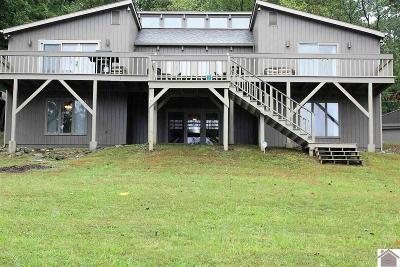 Cadiz, Grand Rivers, Trigg County, Eddyville, Kuttawa Single Family Home For Sale: 250 Water Tower Road