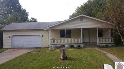 McCracken County Single Family Home For Sale: 11450 Bonham