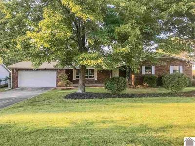 Paducah Single Family Home For Sale: 7301 Annie Lane