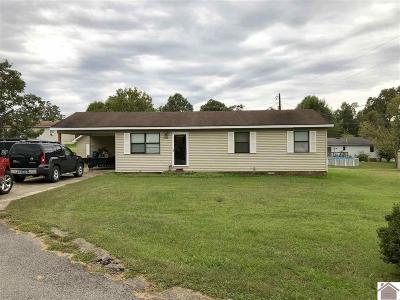 Marshall County Single Family Home For Sale: 1004 Red Fox Dr.