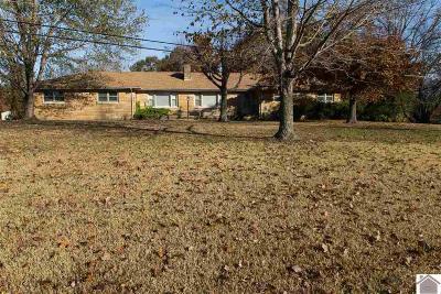 Paducah Single Family Home For Sale: 6640 Kentucky Dam Road