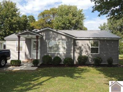 Graves County Single Family Home For Sale: 213 Central Ave.