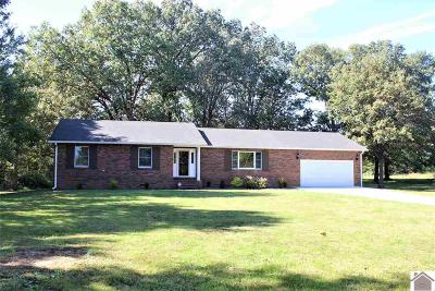 Calloway County Single Family Home For Sale: 1702 Martin Chapel Road