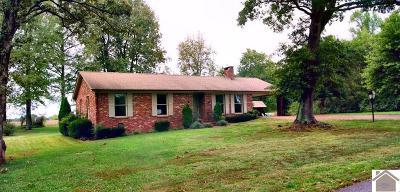 Murray Single Family Home For Sale: 185 King Richard Drive