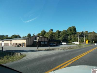 McCracken County Commercial For Sale: 521 & 523 N Friendship