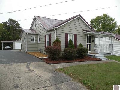 Princeton KY Single Family Home For Sale: $87,500