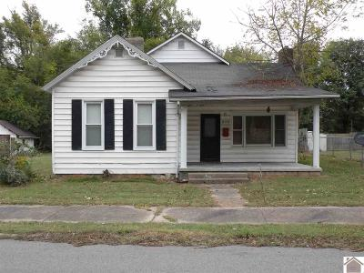 Princeton KY Single Family Home For Sale: $44,900