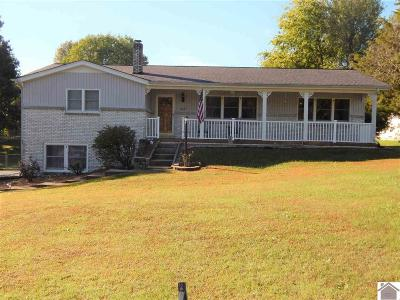 Single Family Home Contract Recd - See Rmrks: 522 Greenapple Drive