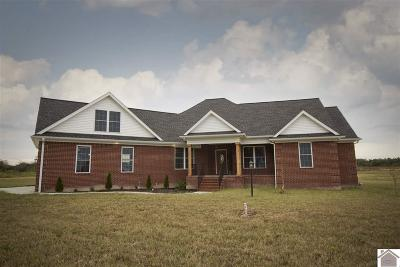 McCracken County Single Family Home For Sale: 8215 Ky Hwy 3520