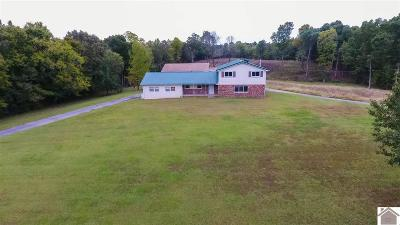 Marshall County Single Family Home For Sale: 4717 Oak Level Road