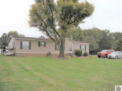 Cadiz KY Manufactured Home For Sale: $65,500