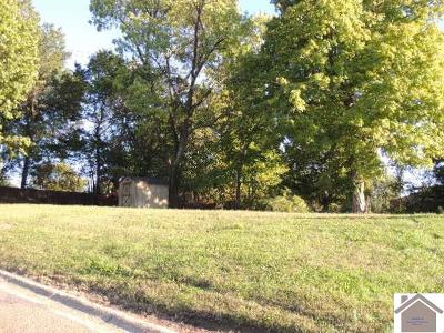 Graves County Residential Lots & Land For Sale: 426 N 7th Street